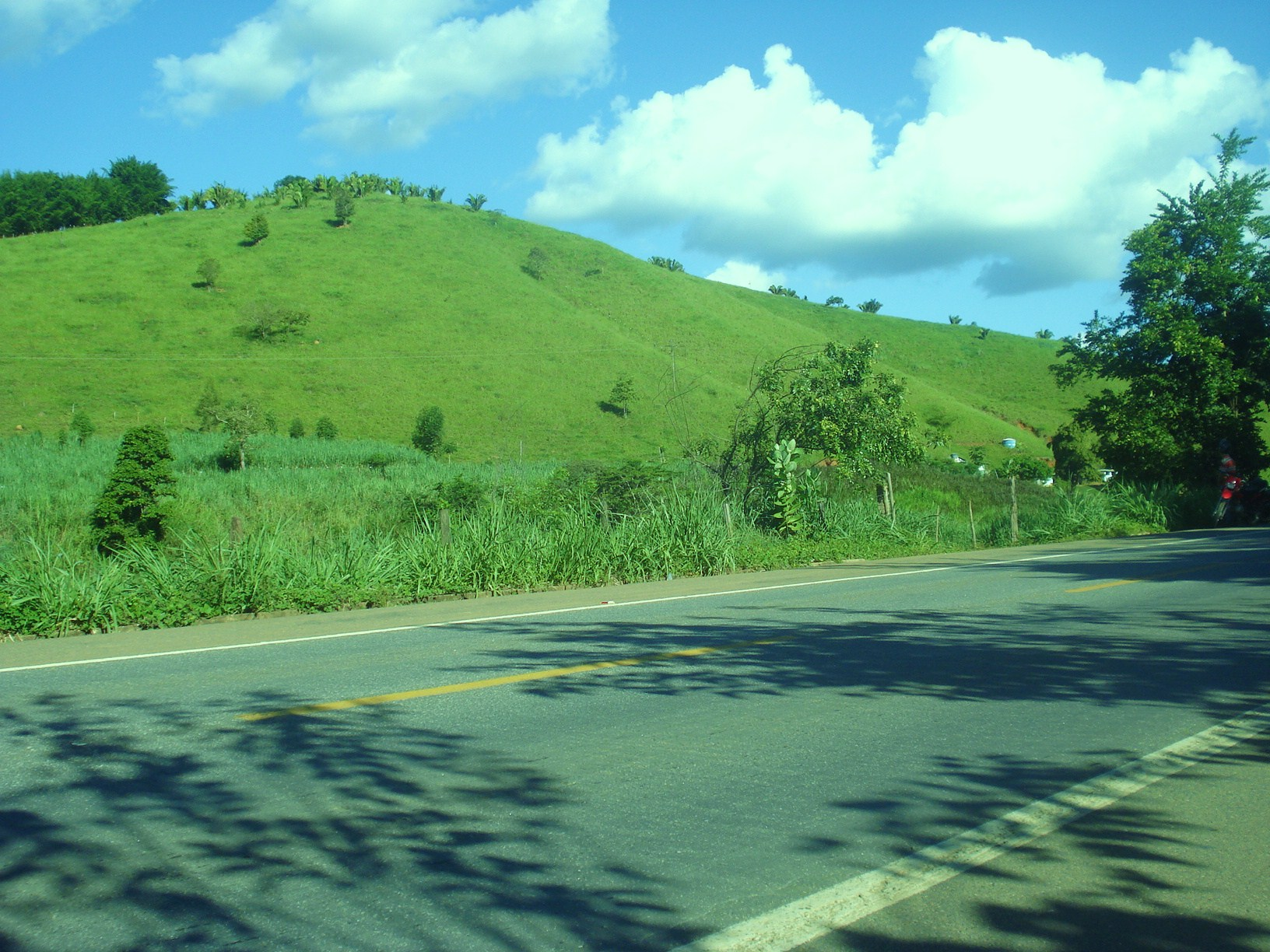 Estrada e campo ao fundo