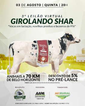 3º  LEILÃO VIRTUAL GIROLANDO SHAR
