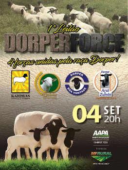 1º LEILÃO DORPER FORCE