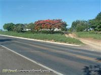 Sítio em Santa Leopoldina - ES com 75 hectares