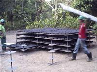 Venda de Madeiras Nobres como mógno e cabreúva(cabriuva) com Documento de Origem Florestal (DOF)