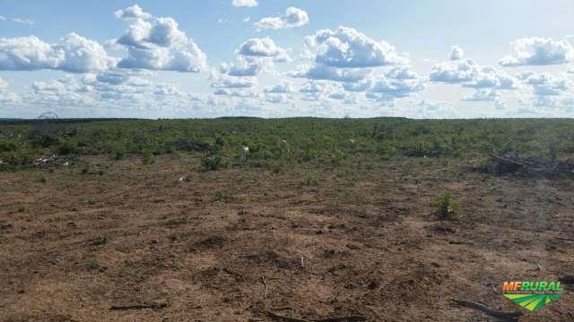Fazenda no Piaui com 6.387 hectares