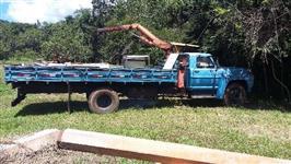 Caminhão Ford F11000 ano 83