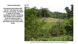 Fazenda 67 alqueires paulistas