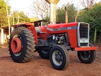 Trator Massey Ferguson 290 4x2 ano 80