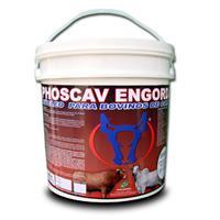 PHOSCAV ENGORDA - 10 kg - Núcleo Mineral P/ Bovinos com MONENSINA - FRETE GRÁTIS PARA TODO O BRASIL