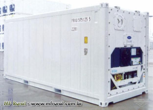 Container frigorífico com capacidade de até 50 ton -  Container atinge até -30ºC