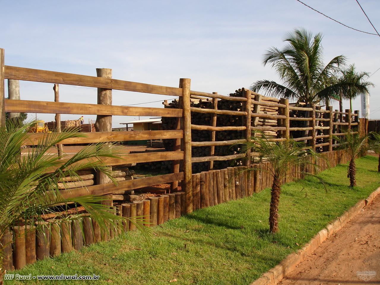 Eucalipto Tratado para cercas e currais