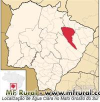 Fazenda 319,44 Hectares em ÁGUA CLARA-MS