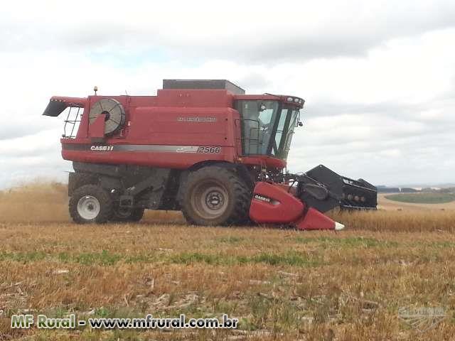 Prestação de serviço de colheita - N.K. Colheitas