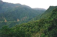 Fazenda de Reserva Florestal - Mata Atlantica