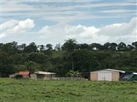 Fazenda Chapadão do Sul , MS