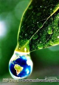 Soluções Ambientais para seu negócio