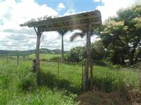 terra de café,2 hectares