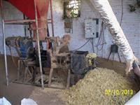 Procura-se socio investidor e administrador para pequena empresa no ramo do agronegócio.