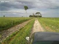 Fazenda Paraíso do Planalto