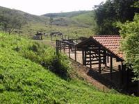 Fazenda 6 Alqueires Rica em Agua Terra Cultura Pomar Rio Aceito Propostas
