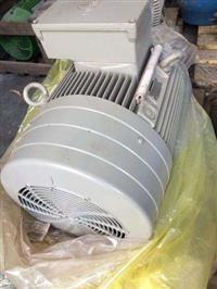 Motor Elétrico Siemens 50 Cv 1700 Rpm 4 polos (Novo)