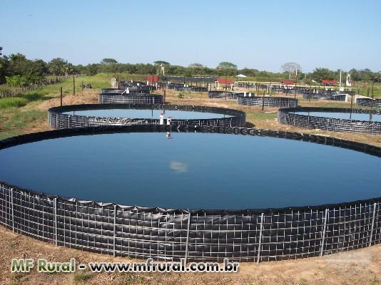 Geomembrana em pead instala es rurais novas materiais for Estanques para piscicultura