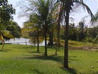 Fazenda na região de Paranaíba/MS para pecuária ou plantio