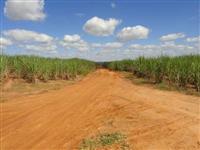 Vendo fazenda na região de Pirassununga/Aguaí com cana arrendada ,milho,laranja