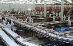 Vendo grupo frigorifico para abate de bovinos,suinos e frangos
