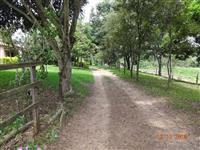 Vendo fazenda em Santa Rita do Passa Quatro rica em água e mecanizável