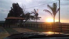 Vendo fazenda em Santa Cruz do Rio Pardo para pecuária com renda