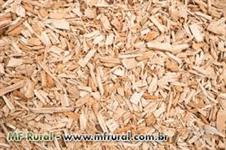 Vendo biomassa cavaco de eucalipto com baixa umidade