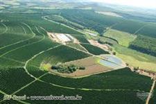 Vendo fazendas no interior de São Paulo para plantio e pecuária