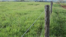 Vendo fazenda em Echaporâ/SP formada para atividade pecuária