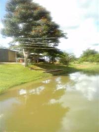 Vendo sítio localizado na região de Lupércio/SP com represa e pasto rio no fundo