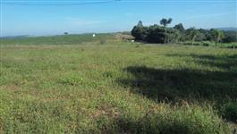Vendo sítio em Fernão/SP localizado na margem de rodovia asfaltada