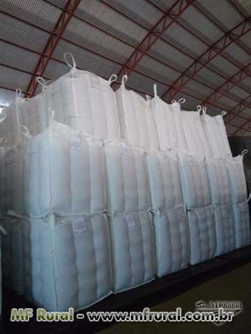 Big bag para sementes milho/soja/milheto - Travados/padrão