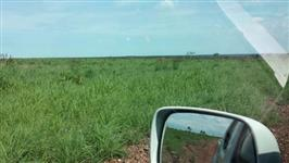 Excelente Oportunidade - Fazenda de 968ha em Sta Rita do Tocantins - TO