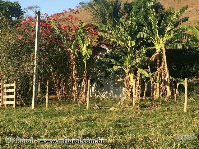 Linda Fazenda em Campos Dos Goytacazes próxima a Santa Maria e Santo Eduardo