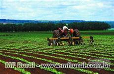 Financiamento - Crédito Rural - Consórcio Rural para terras e equipamentos