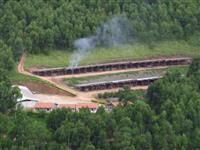 Fazenda 165ha Dupla Aptidão, Estruturada para Pecuária, 100ha Reflorestado Eucalipto + Carvoaria