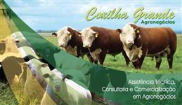COMPRA E VENDA DE CORDEIROS(AS), OVELHAS E CARNEIROS