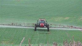 Fazenda Plantio com 840 Ha em SC   Oportunidade Rara de Investimento