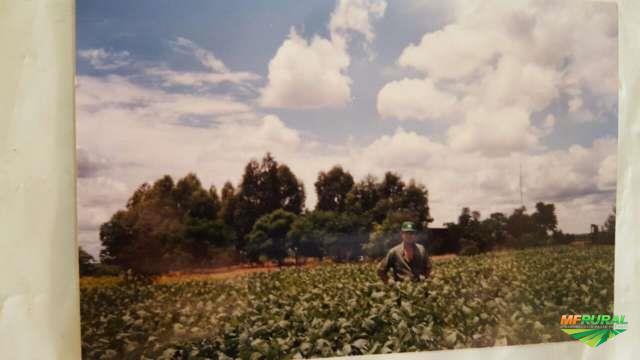 FAZENDA BAHIA 2000 HA