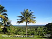 Fazenda ao lado do porto sul na Bahia com vista ampla pro MAR