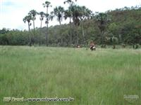 Fazenda Malhada Grande