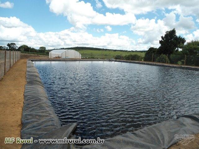 Tanque para irriga o e piscicultura instala es for Construccion de estanques para piscicultura