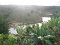 Fazenda em Una - Bahia