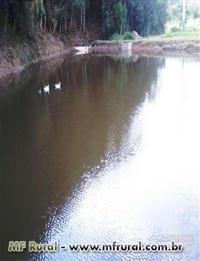 Maravilhoso Sitio com 31 alqueires 4 lagos e 5 nascentes. Ótima oportunidade!