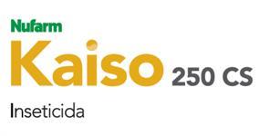 Kaiso 250 CS