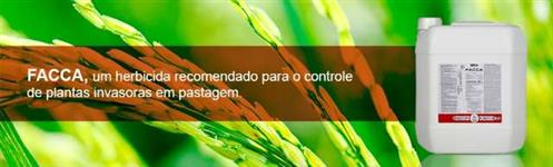 FACCA - BRA Agroquímica