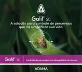 Galil SC