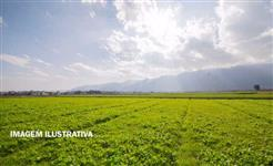 Fazenda com 198,44 hectares em Goiatuba/GO